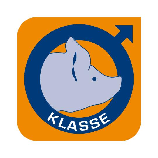 Picture: logo Klasse